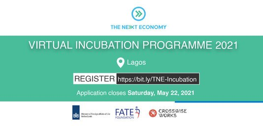 The Next Economy Virtual Incubation Programme 2021 for aspiring Entrepreneurs.