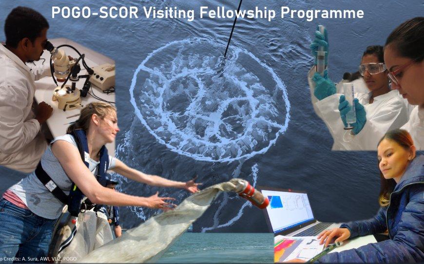 POGO-SCOR Visiting Fellowship Programme 2021