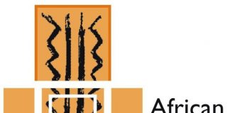 ASC Leiden Visiting Fellowship Programme 2021 for African Researchers (Fully Funded to the Netherlands)