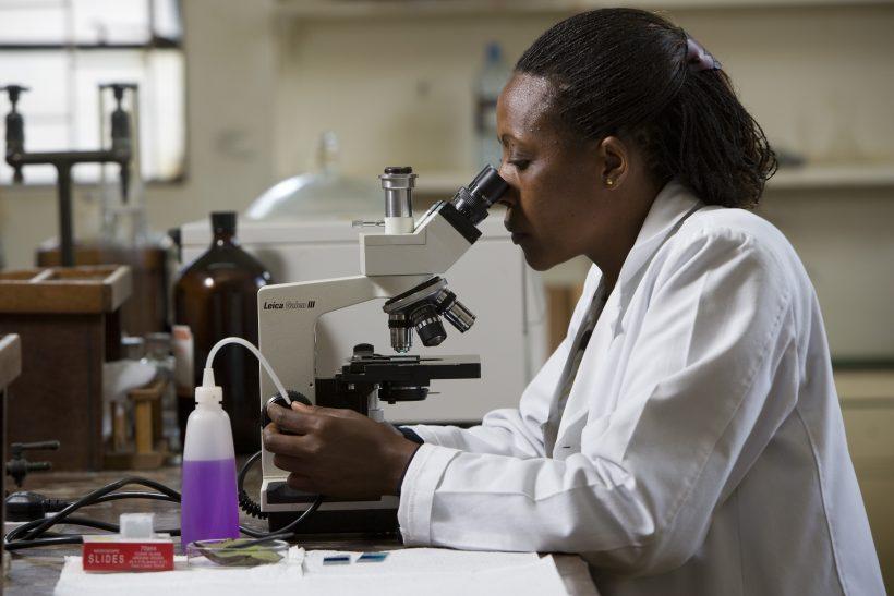 AWARD Leadership Program for Emerging African Women in Science 2021