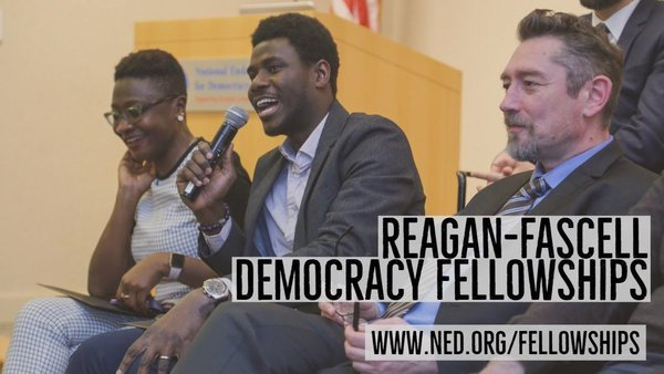 NED Reagan-Fascell Democracy Fellows Program 2022/2023 for democracy activists, journalists, civil society leaders & scholars Worldwide (Fully Funded to Washington DC, USA)