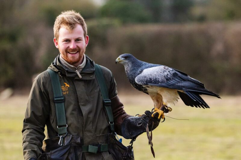 Hawk Conservancy Trust Marion Paviour Award 2021 (Up to £1,000)
