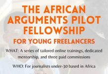 The African Arguments Pilot Fellowship 2021 for young Freelancers