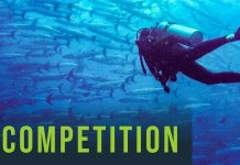 PEMSEA EAS Futures Video Competition 2021