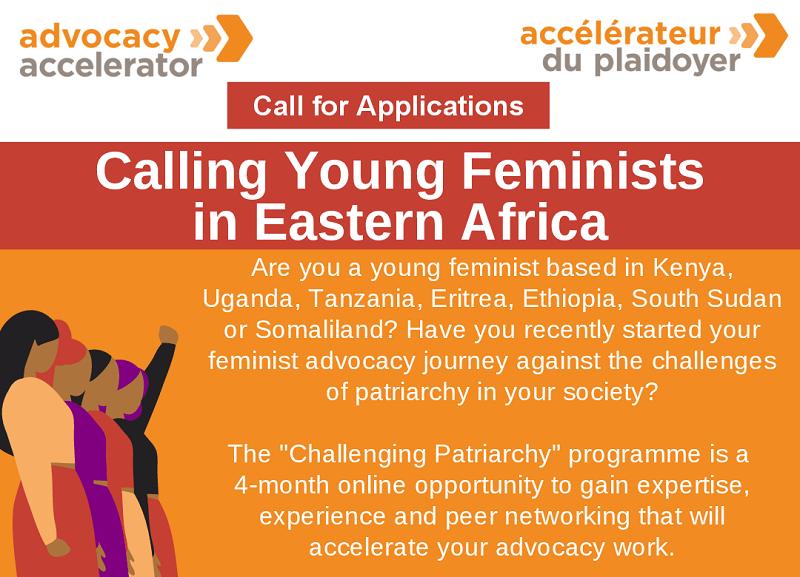 Heinrich Böll Foundation Challenging Patriarchy Advocacy Capacity Strengthening Program 2021