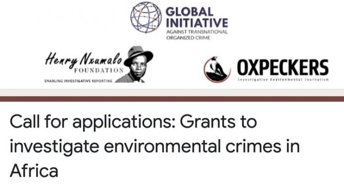 Grants to investigate environmental crimes in Africa