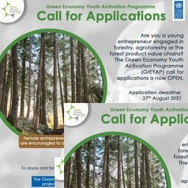 KCIC Green Economy Youth Activation Programme for young Kenyan entrepreneurs.
