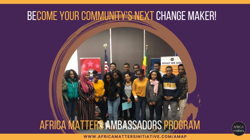 Africa Matters Ambassadors Program (AMAP) 2022 for Young African Leaders
