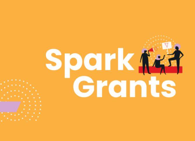 SheDecides Spark Grants 2021 (Up to $20,000)