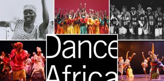 """Call for Submissions – DanceAfrica 45 at BAM """"Homegrown: In the Spirit of Our Beginnings"""""""